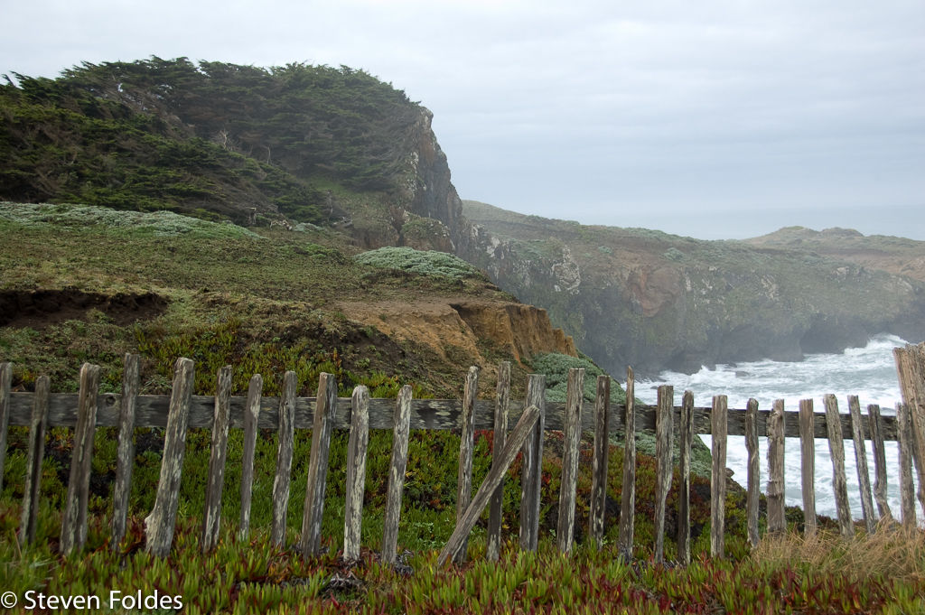 Sea Ranch-15